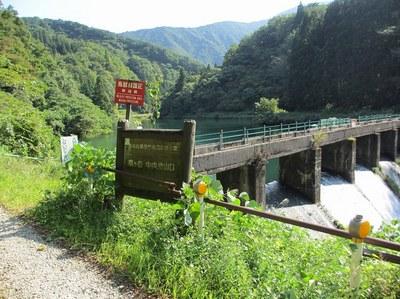 awagatake_kamo_2.jpg