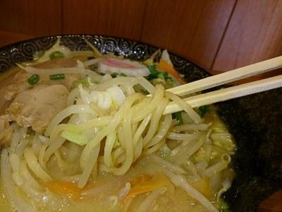 bayashi_tsubame_3.jpg