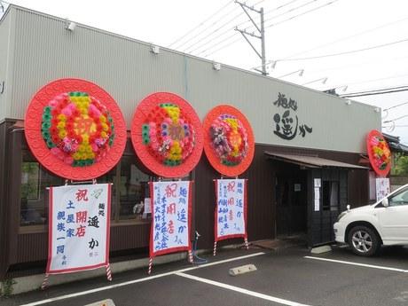 haruka_1.jpg