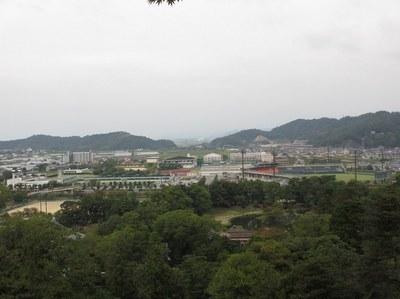 hikonejou_9.jpg