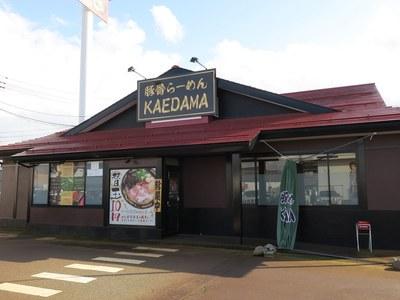 kaedama_1.jpg