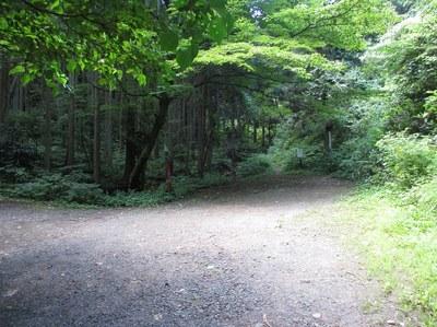 kakuda_yunokoshi_4.jpg