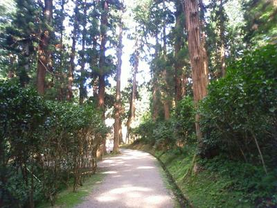 kamoyama_2.jpg