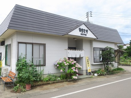 misa_hamaya_1.jpg
