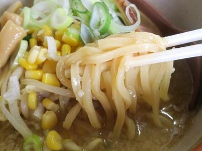 misozen_nagaoka_3.jpg