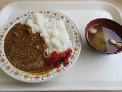 niigatashiyakusyo_honkan_201603_5.jpg