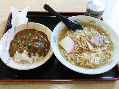 shinsarashina_2.jpg