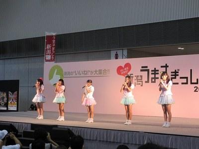 umasagishiri2012_8.jpg