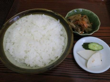 yanagi_6.jpg