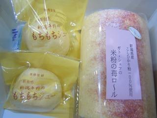 2010umasagishiri_9.jpg