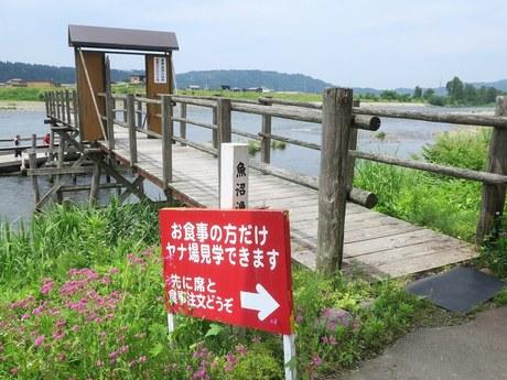 horinouchiyanaba_2.jpg