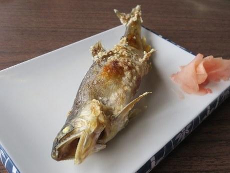horinouchiyanaba_8.jpg