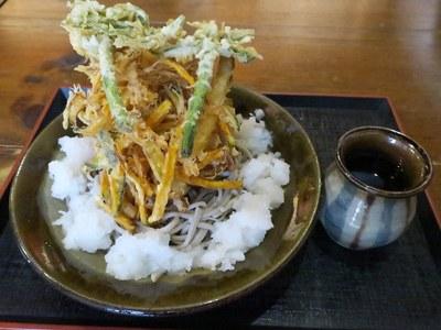shioya_tachibana_4.jpg