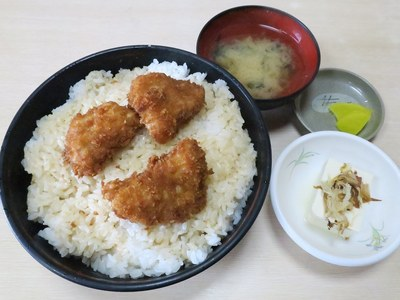 tonkatu_kaneko_201605_2.jpg