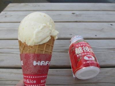 yasuda_yogurt_4.jpg