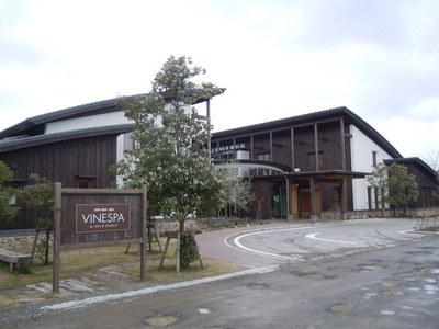 vinespa_201112_1.jpg