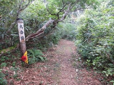 aotananbasan_kiotoshi_15.jpg