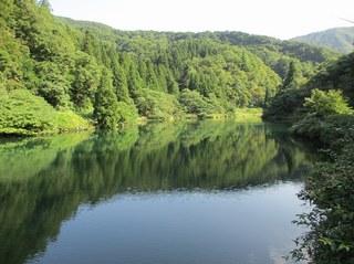 awagatake_kamo_3.jpg