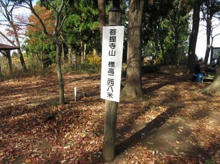 bodaijiyama_17.jpg