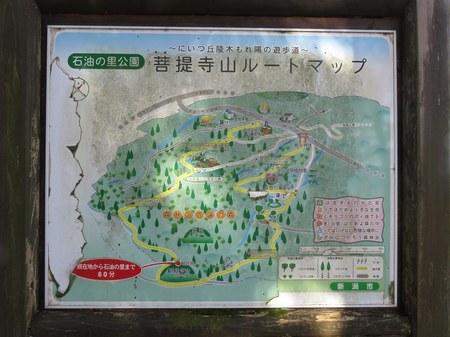 bodaijiyama_19.jpg