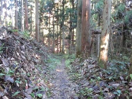 bodaijiyama_27.jpg