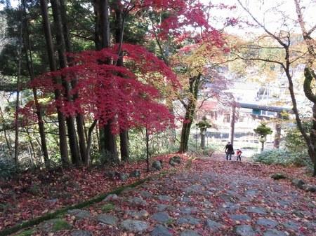 bodaijiyama_39.jpg