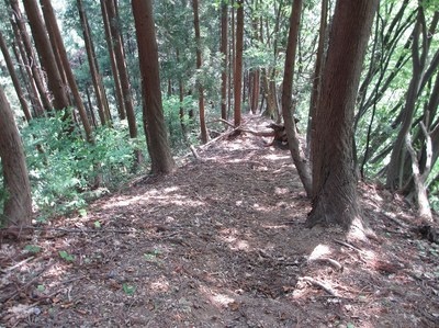 hakusan_48.jpg