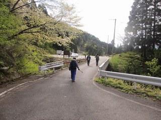 hishigatake_201305_24.jpg