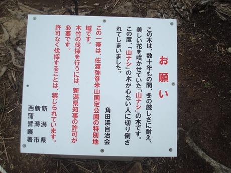 kakuda_toudai_10.jpg
