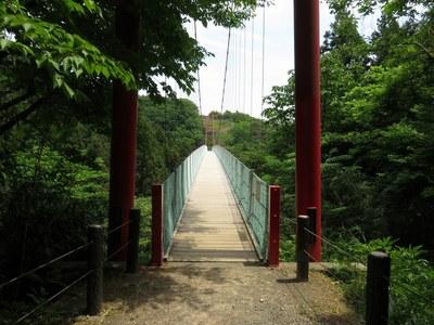 kugamiyama_tigo_35.jpg