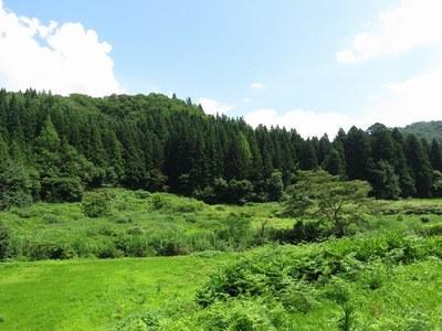 nihonkoku_42.jpg
