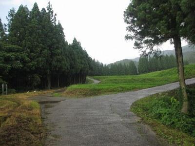 ninouji_1.jpg