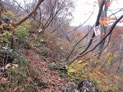 takakurayama_13.jpg
