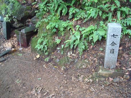 yahiko_20.JPG